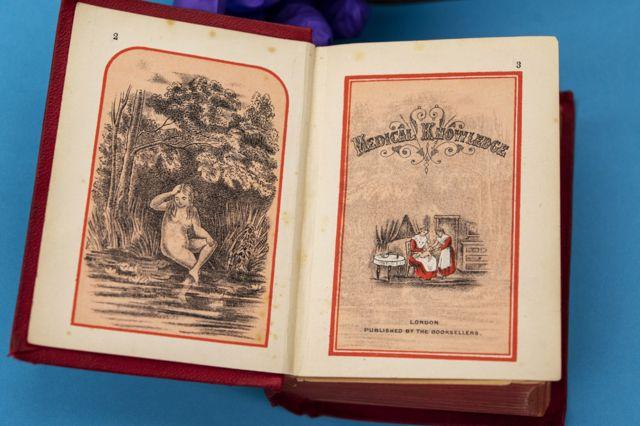 раскрытая книга, 1855