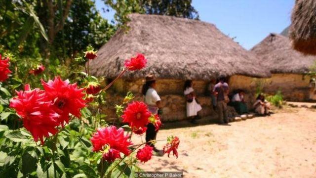 بعضی از اعضای جامعه آروآکو از بازگشایی سرزمینهای خودمختار به روی گردشگری بومی و توانمندسازی مستقل اقتصادی حمایت میکنند