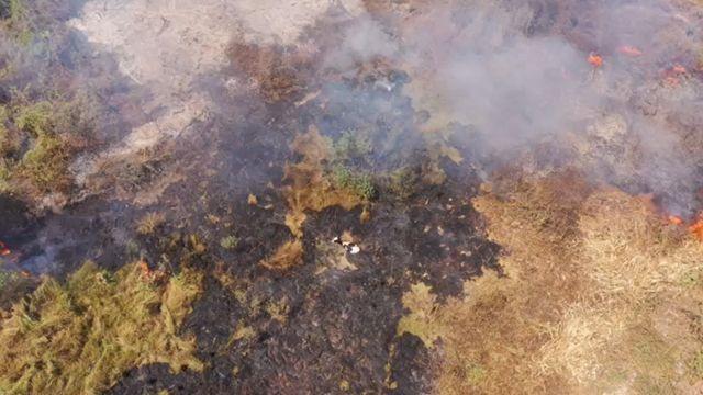 Área do Pantanal alvo de queimadas, neste mês de setembro