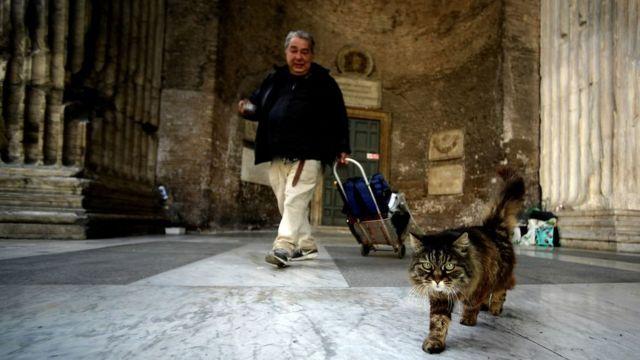 Итальянец с котом у Пантеона в Риме