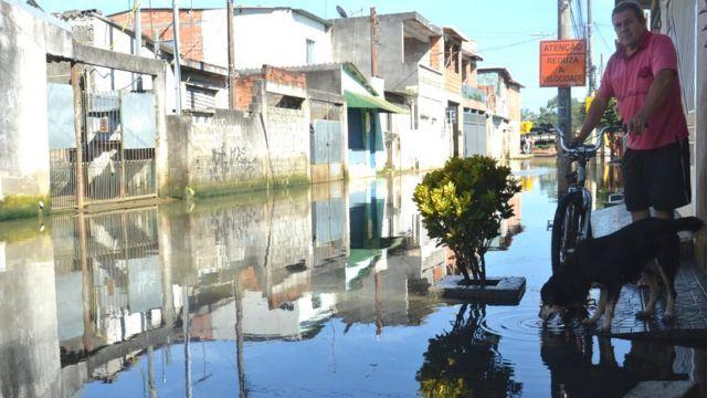 Cachorro bebe água em rua alagada há mais de um mês em São Miguel Paulista