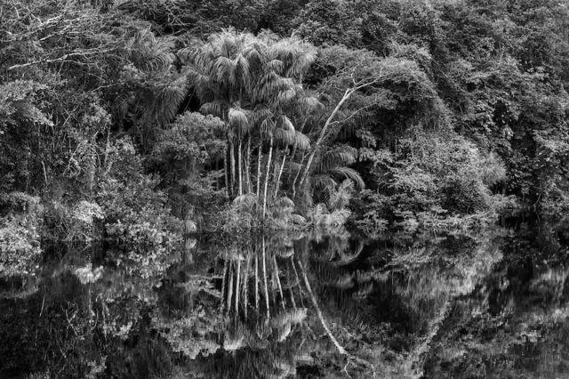 imagem da exposição 'Amazônia' na Filarmônica de Paris