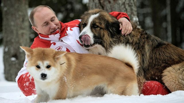 Putin akichezacheza na mbwa wakati wa msimu wa baridi, 2013