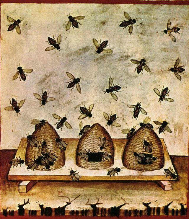 Apicultura en ilustración del siglo XIV.