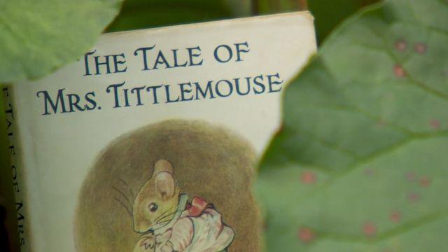 A Beatrix Potter book cover