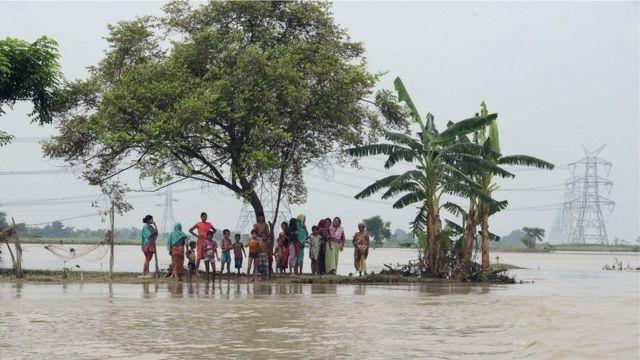 بہار سیلاب
