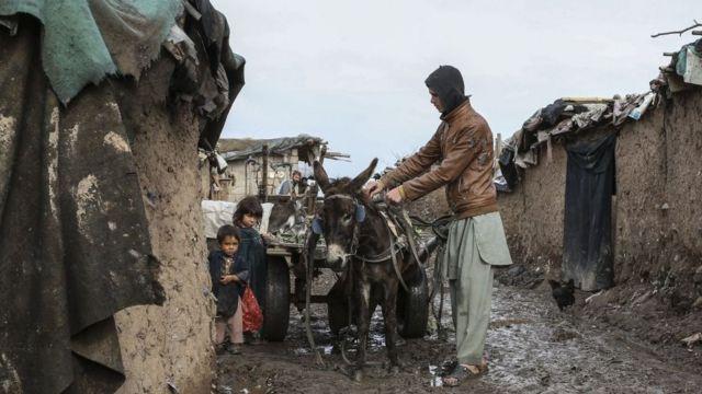 阿富汗移民家庭