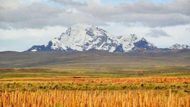 Cultivos a orillas del Lago Titicaca