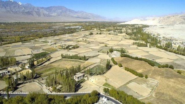 सिंधु नदी घाटी की खेती बहुत उपजाऊ मानी जाती है
