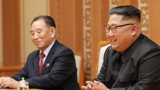 (캡션) 김영철 부위원장(왼쪽)이 수행하는 게 오히려 어울리지 않는다는 의견도 있다