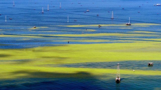 Los habitantes locales han evidenciado los problemas en el lago desde hace años.