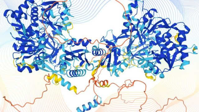 Illustration of the three-dimensional structure of a protein