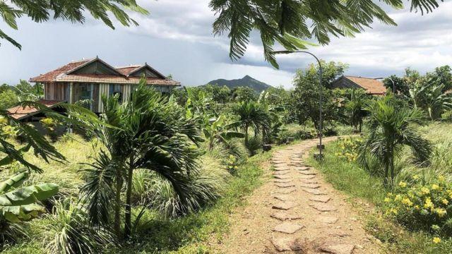 تنتج مزارع مدينة كامبوت ما يتراوح بين 70 و100 طن من الفلفل الأسود سنويا