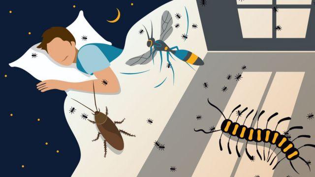 Böcek saldırısı gibi tehlike rüyaları salgının başlangıcında daha yaygındı