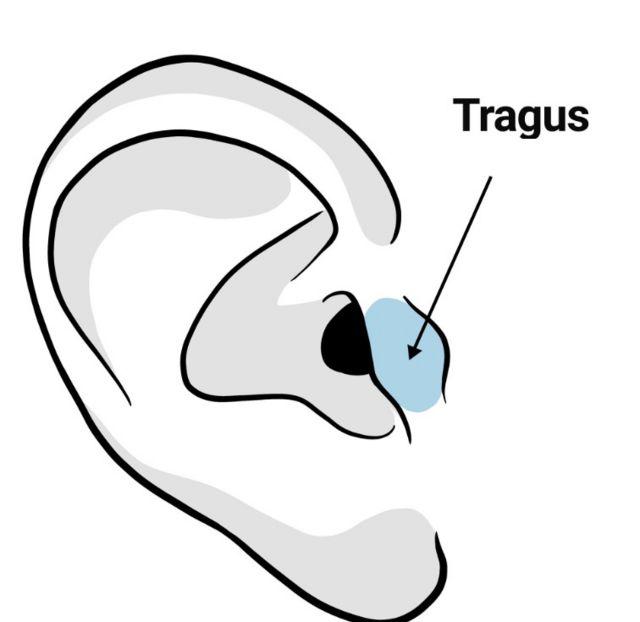 """Ilustração de uma orelha com o ponto """"tragus"""""""