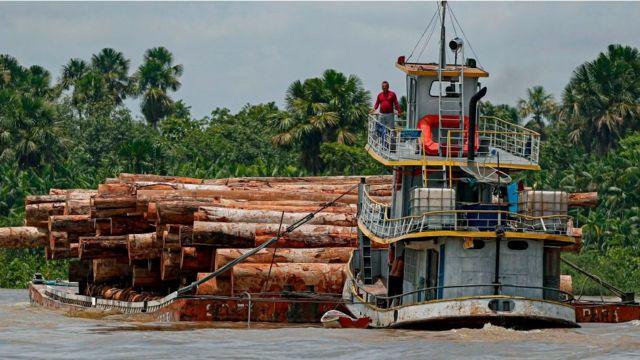 Embarcação transporta madeira ao longo do rio Murutipucu