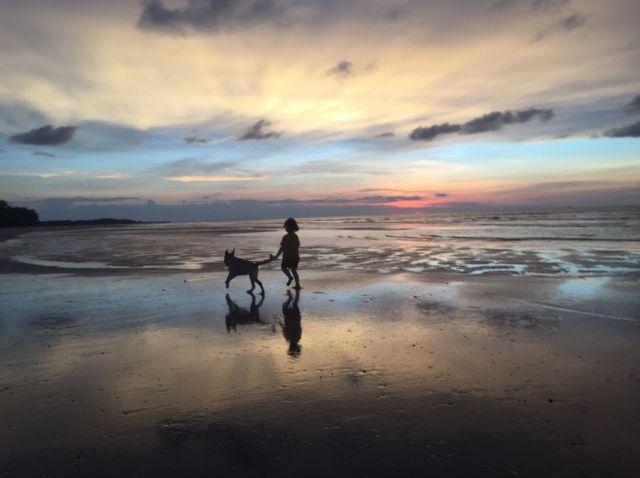 A young girl and Labrador run on the beach as the sun sets
