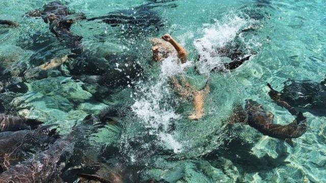 کاترینا به رغم نگرانی خانواده دوست پسرش، مشتاق بود که داخل آب برود و چند عکسی در کنار این کوسهها بگیرد