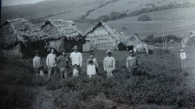Una imagen antigua de Galápagos
