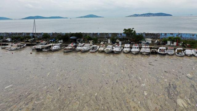 Bostancı Limanı deniz salyasından etkilenen yerler arasındaydı