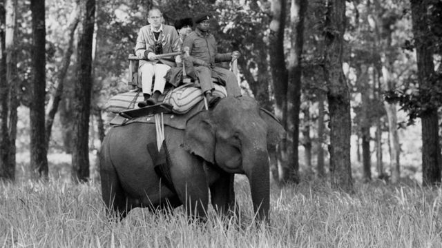 Philip sits atop an elephant while visiting the Kanha Game Reserve today during his ten day tour of India with the Queen