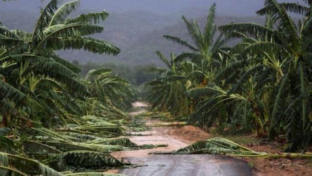 हेती में तूफ़ान 'मैथ्यू'
