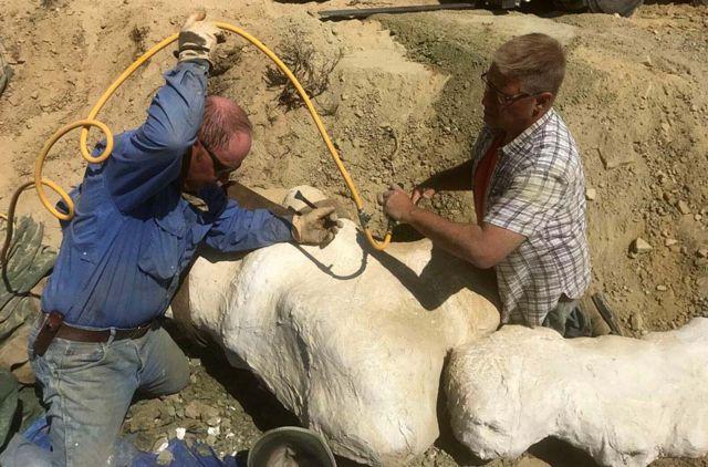 'Mission Jurassic' dinosaur hunt to get under way
