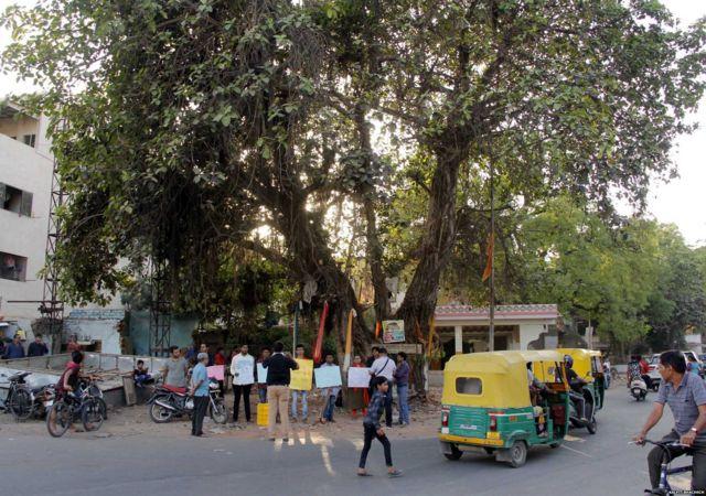 अहमदाबाद में बरगद के एक पेड़ को कटने से बचाने के लिए आम नागरिक नगर निगम के ख़िलाफ़ प्रदर्शन करते हुए