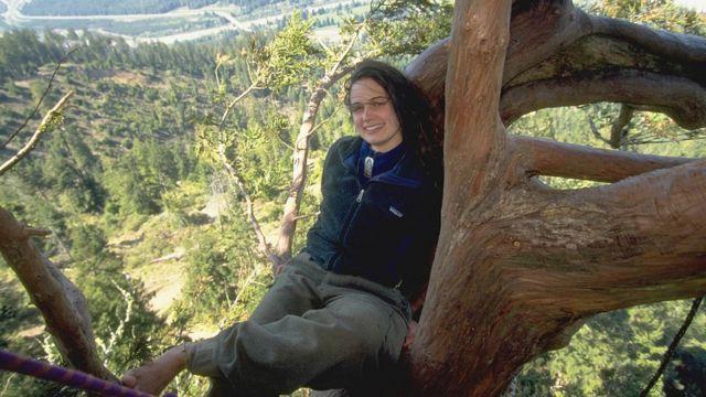 Julia arriba de un secuoya con el panorama de un bosque atrás