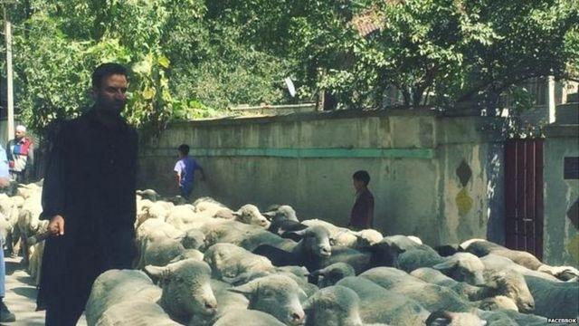jatinder singh's village
