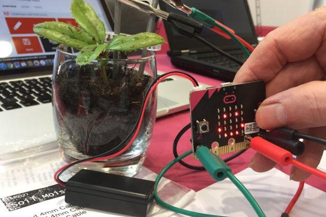 Micro bit conectada a una planta