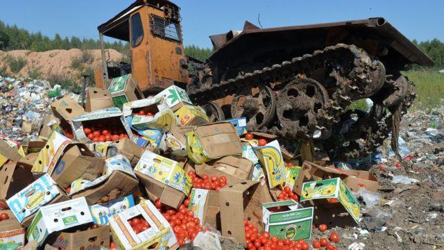 трактор давит помидоры