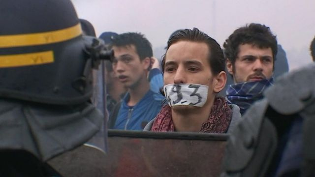A protester in Paris.