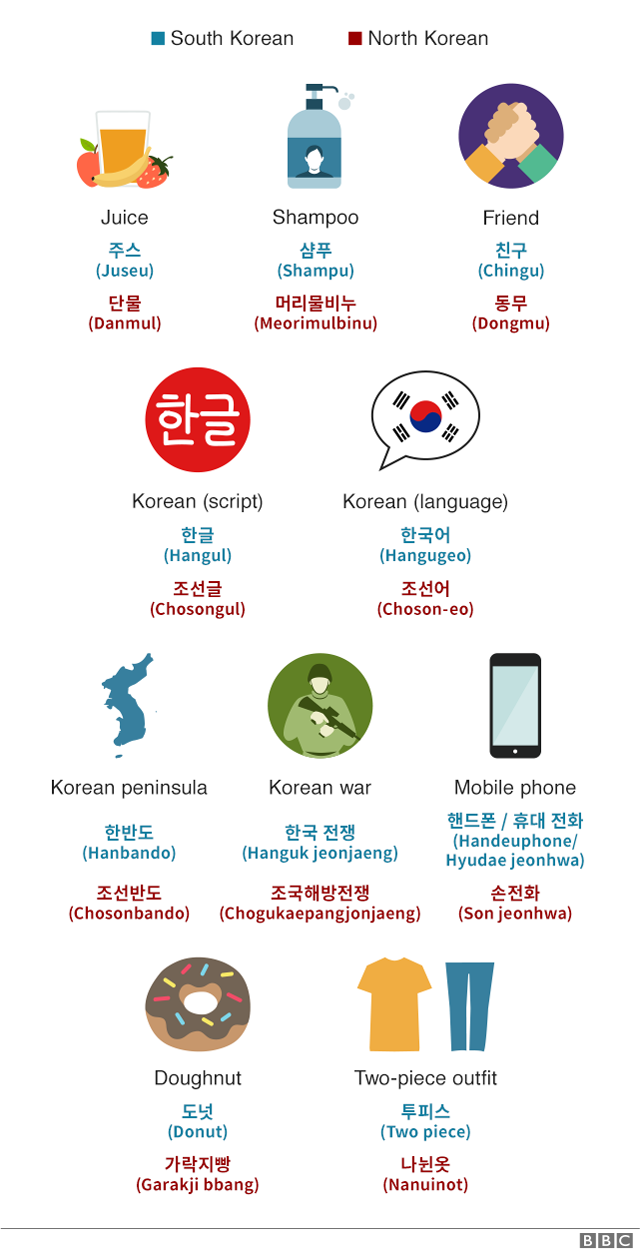 Everyday words with different meanings in the two Koreas