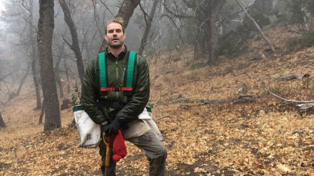 Climate change: One man's fight to save a California tree