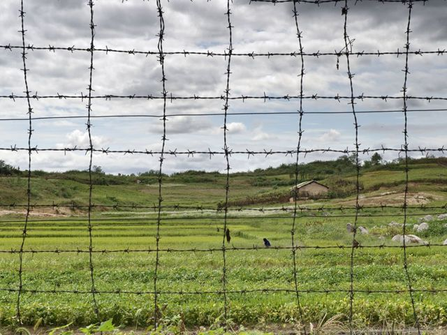 Demilitarized zone in North Korea.
