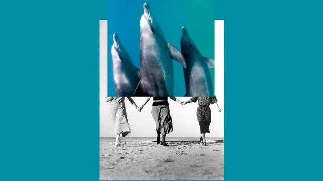 Некоторые из людей - настоящие эксперты в использовании эха для ориентации в пространстве, почти как дельфины