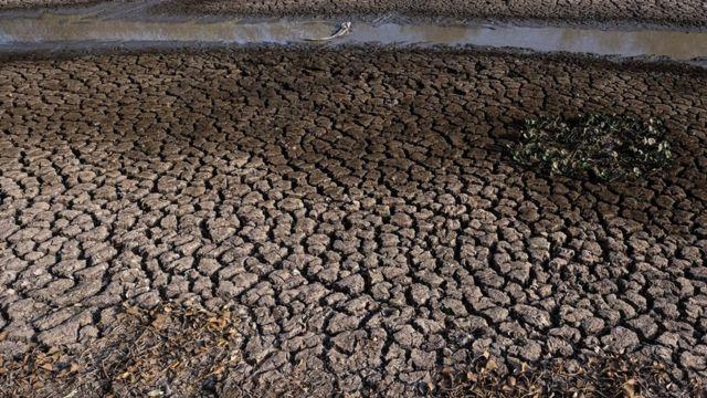 Área totalmente seca no Pantanal