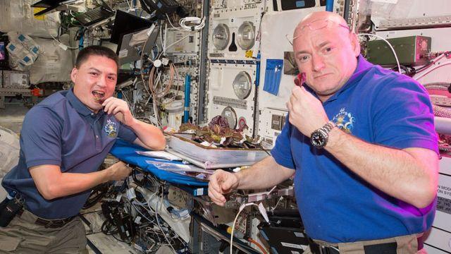 Астронавты с салатом