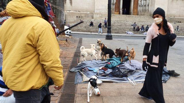 Natália ao lado dos cães que dormem na mesma barraca que ela na praça da Sé