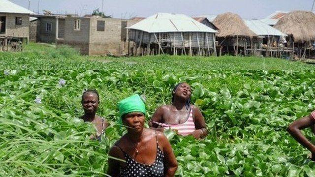 Folha Mouftaou, David Gnonlonfoun, Green Keeper Africa,