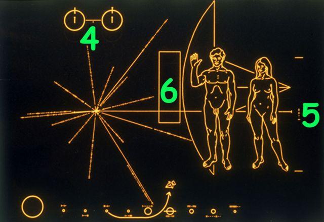 Placa con números 4, 5 y 6