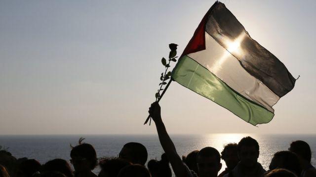 علم فلسطين ووردة