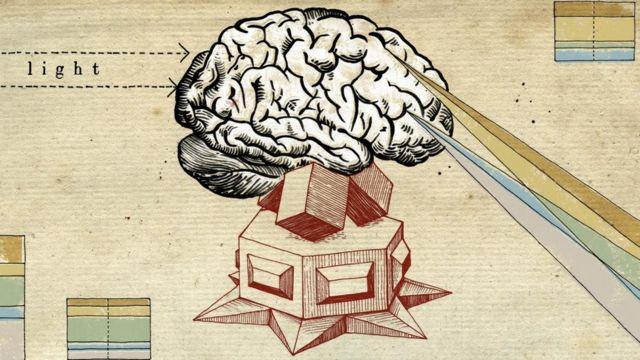 """تركيبة الدماغ لدى البشر مختلفة كـ """"بصمات الأصابع"""""""