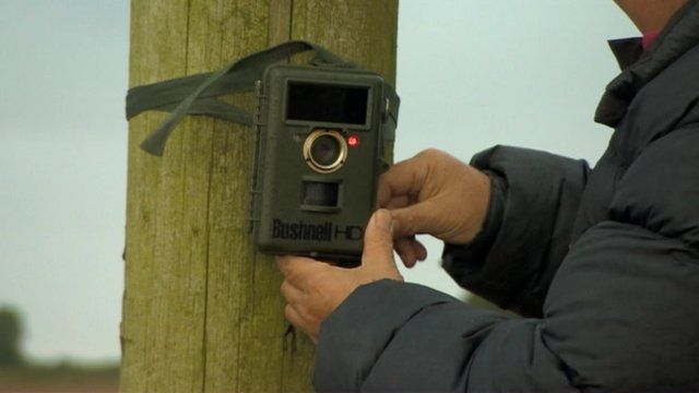 A night-vision camera is strapped to a pole
