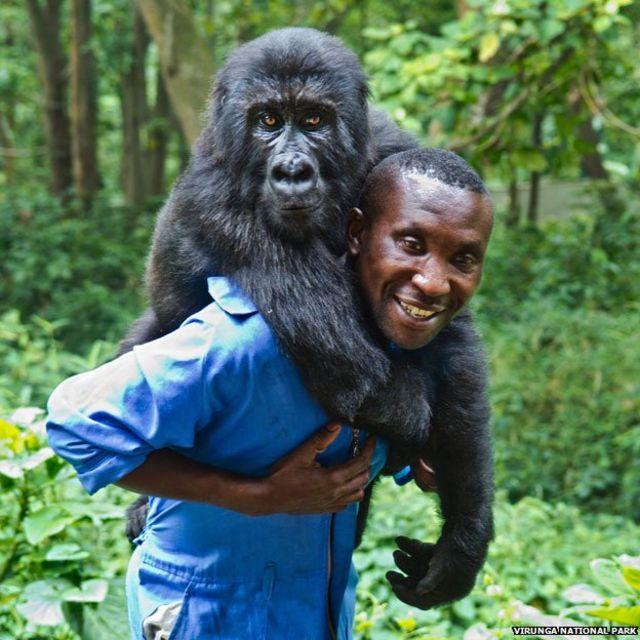 Andre Bauma with Ndakasi