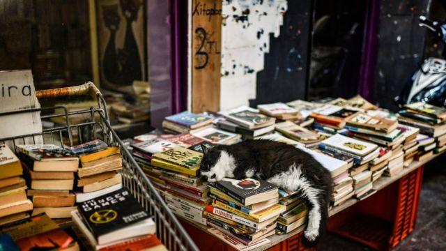 Yayınevleri kağıdın yanı sıra yabancı yazarların kitaplarını çevirmek için gereken lisansları da dövizle alıyor