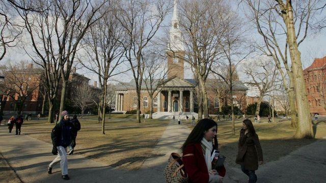 """Кроме """"Лиги плюща"""", Кассандру пригласили и другие престижные американские университеты, например, Стэндфордский и Нью-Йоркский"""