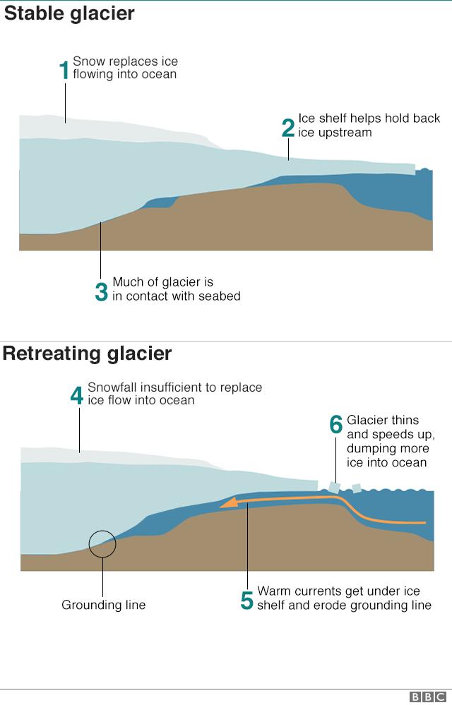 Infographic explaining how Thwaites glacier is retreating
