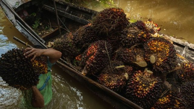 Indonesia siap memenuhi permintaan India